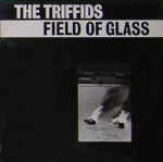 The Triffids - Field Of Glass